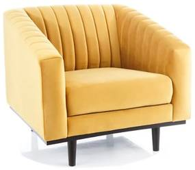 DAVE Velvet 1 fotel, 83x78x85, bluvel 68
