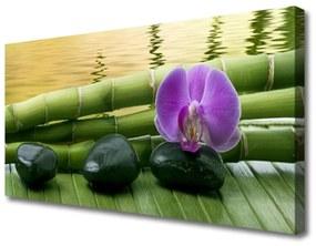 Vászonfotó Virág Stones Bamboo Nature 125x50 cm