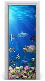 Ajtó tapéta korallzátony 85x205 cm