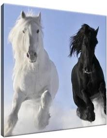 Vászonkép Black and white 30x30cm 2039A_1AI