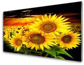 Fali üvegkép Napraforgó virág növény 140x70 cm