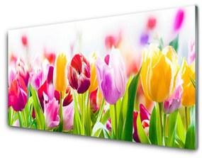 Akrilkép tulipán virágok 140x70 cm
