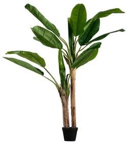 Mű banánfa, magasság 138 cm - WOOOD