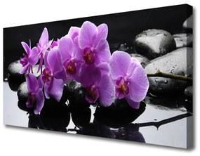 Vászonkép falra Stones virág növény 140x70 cm