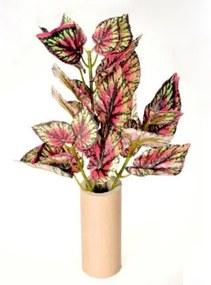 Művirág begónia zöld-piros