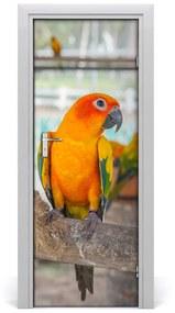 Poszter tapéta ajtóra Papagáj 95x205 cm