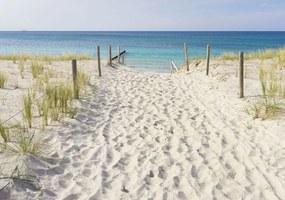 Fotótapéta - A strandra és a tengerre nyíló kilátás (254x184 cm)