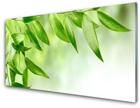 Akrilkép Zöld levelek Természet 140x70 cm