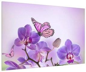 Lepke az orchideán (90x60 cm)