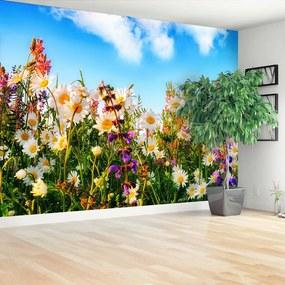 Fotótapéta Tavaszi virágok 104x70