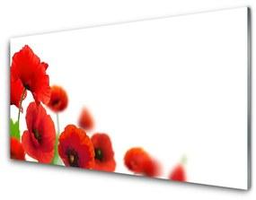 Fali üvegkép Piros Pipacsok Természet 140x70 cm