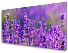 Fali üvegkép Lila levendula mező 125x50 cm