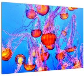 Medúza a tengerben képe (70x50 cm)