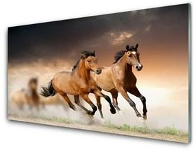 Modern üvegkép lovak Állatok 100x50 cm