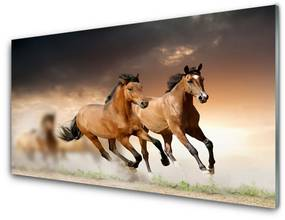 Modern üvegkép lovak Állatok 125x50 cm