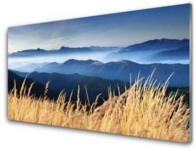 Üvegkép falra mező táj 100x50 cm