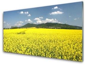 Fali üvegkép Mező Mező Természet repce 140x70 cm