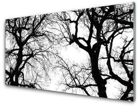 Akrilkép Fák Természet fekete-fehér 140x70 cm