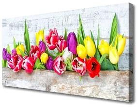 Canvas kép Tulipán virágok természet 125x50 cm