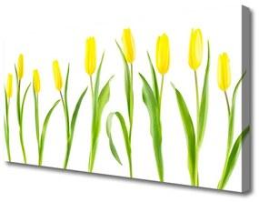 Vászonkép Tulipán sárga virágok 100x50 cm