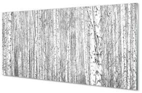 Üvegképek Fekete-fehér fa erdő 125x50 cm