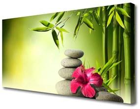 Vászonkép nyomtatás Virág bambusz Zen kövek 120x60 cm
