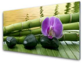 Üvegkép Virág Stones Bamboo Nature 140x70 cm