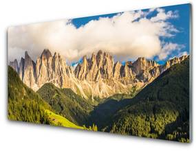 Modern üvegkép Csúcstalálkozók hegység felhők Forest Meadow 125x50 cm