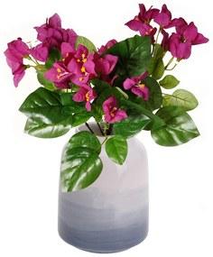 Bougainvillea művirág, magassága 30 cm