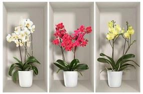 Orchids 3 db-os 3D falmatrica szett - Ambiance