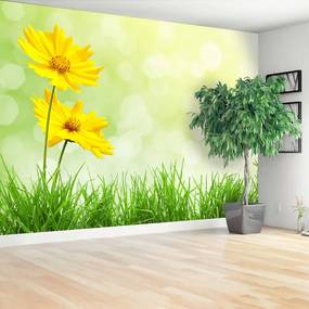 Fotótapéta sárga virágok 104x70