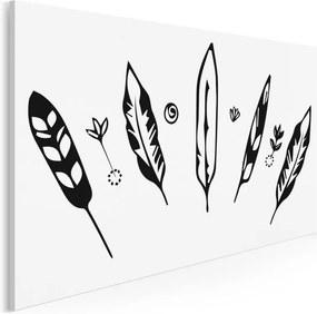Fekete tollak vászonkép