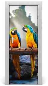 Ajtó tapéta papagájok ara 95x205 cm