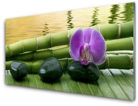Akrilüveg fotó Virág Stones Bamboo Nature 140x70 cm