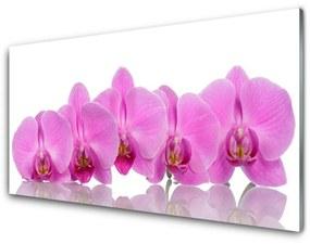 Modern üvegkép Rózsaszín orchidea virágok 140x70 cm