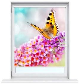 Nyomatos roletta Pillangó virágokon
