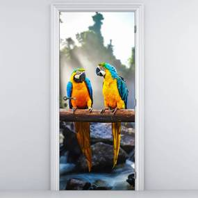 Fotótapéta ajtóra - Három papagáj (95x205cm)
