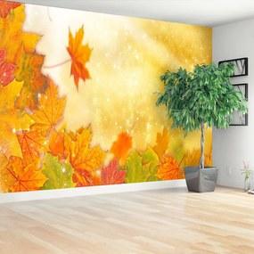 Fotótapéta Őszi levelek 104x70