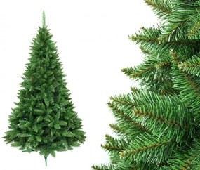 Karácsonyfa Jegenyefenyő 180cm hegyi