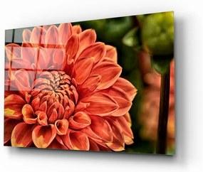 Flowers IV. üvegezett kép - Insigne
