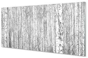 Akrilképek Fekete-fehér fa erdő 140x70 cm