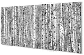 Üvegképek Fekete-fehér fa erdő 100x50 cm