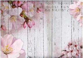 Fotótapéta - Apple Blossoms