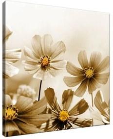 Vászonkép Virágos szépség 30x30cm 1484A_1AI