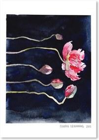 Blooms on Black III by Claudia Libenberg plakát, 30 x 42 cm - Americanflat